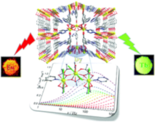 A series of lanthanide(III) metal–organic frameworks derived from a pyridyl-dicarboxylate ligand: single-molecule magnet behaviour and luminescence properties (Dalton Trans., 2020, 49, 14123)
